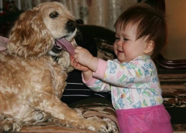 sometimes the baby just need to check what's in dog's mouth
