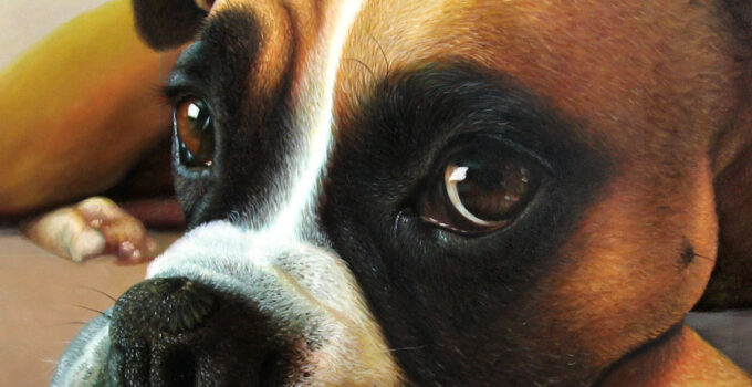 Hand painted portrait from photo of beautiful dog.